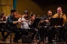 Dia Nacional da Música Clássica